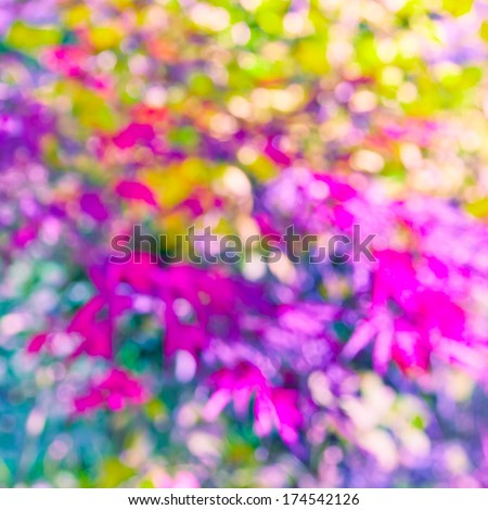 Art floral background, nature abstract. Pink magnolia in bloom in morning purple sun light. toned photo. - stock photo