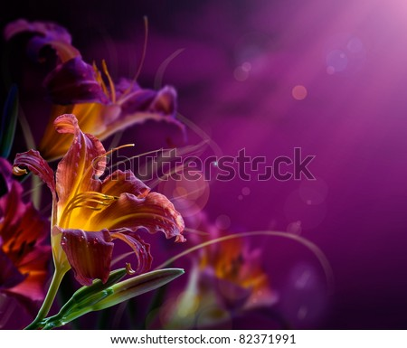 Art Flowers on a red background .With copy-space - stock photo