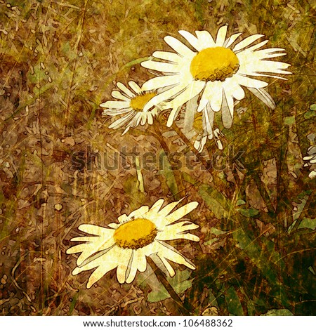 art grunge floral vintage brown gold background with white graphic chamomiles - stock photo