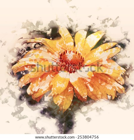 art grunge floral vintage watercolor background with yellow asters toned retro instagram filter effect - stock photo