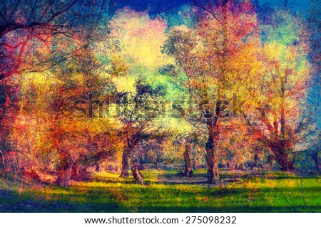 Art grunge landscape showing old forest on sunny summer day. - stock photo