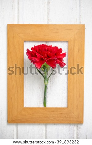 art of red Carnation flower in wooden frame on white wooden  background - stock photo