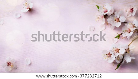 art Spring Blooming; spring flowers on wooden background - stock photo