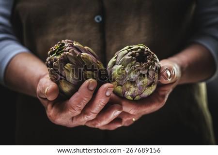 Artichoke in Hands  - stock photo