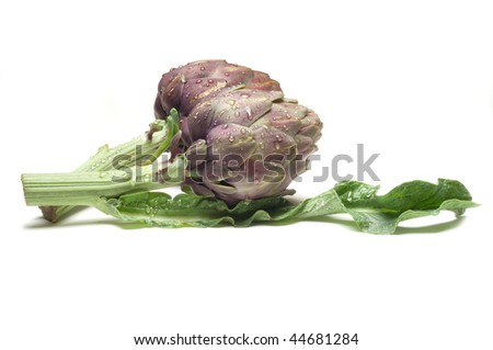 artichoke on wihite - stock photo