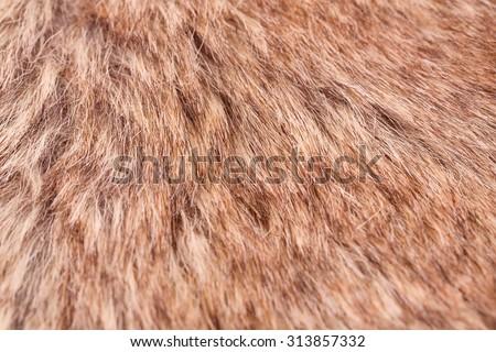 Artificial fur background closeup picture. - stock photo