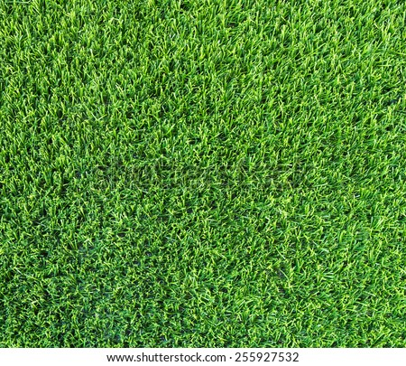 Artificial grass of the indoor football stadium. - stock photo