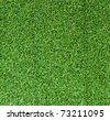 Artificial grass texture - stock photo