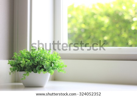 Artificial green flower near the window with light indoor. - stock photo
