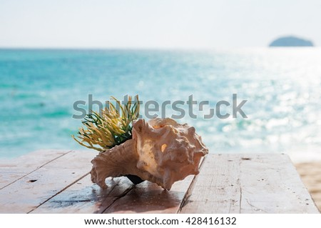 Artificial green grass in a pot inside sea shell decoration on a wooden table - stock photo