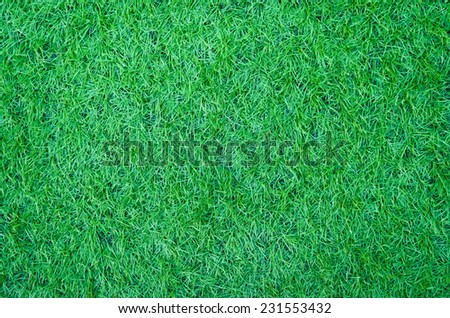 Artificial green grass texture for background . - stock photo