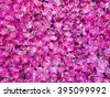 Artificial pink orchid backdrop wall for background - stock photo