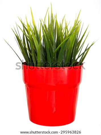 Artificial plant in red flower plot isolated on white background - stock photo