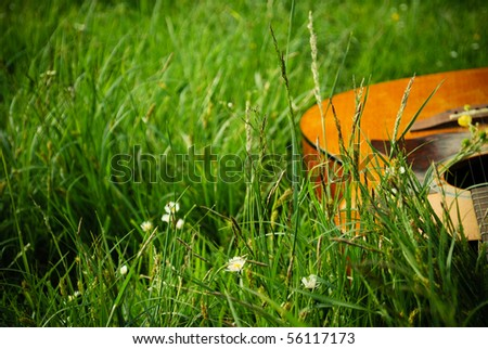 Artistic Picture of the Guitar in the Grass and Flowers - stock photo