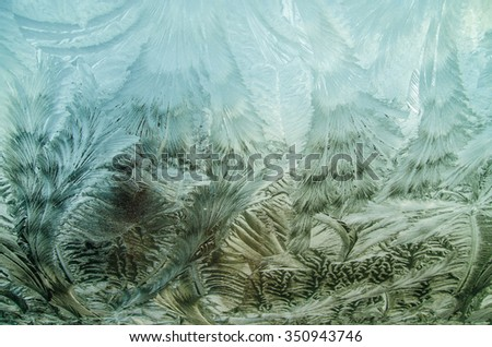 Artistic shapes created by nature, frozen windshield  with feather like shapes and golden sun light coming through.