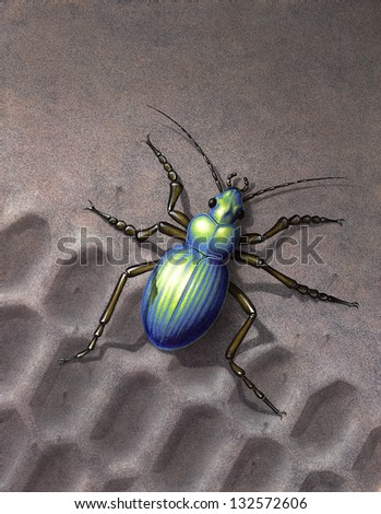 "Artwork of my own named ""Colosoma"", painted with various techniques. It shows a iridescently beetle running over a skidmark in the sand"