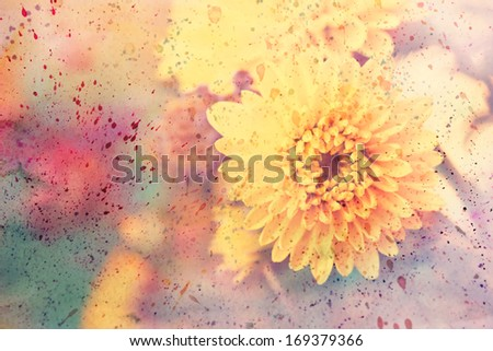 artwork with beautiful yellow aster and watercolor splatter - stock photo