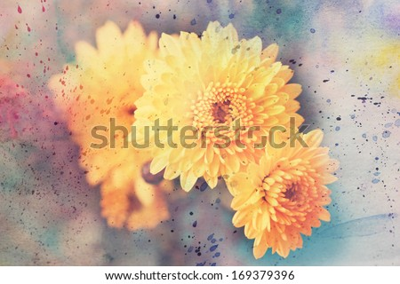 artwork with beautiful yellow asters and watercolor splashes - stock photo