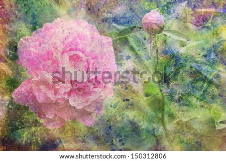 artwork with pink peony flower and colorful watercolor splatter - stock photo