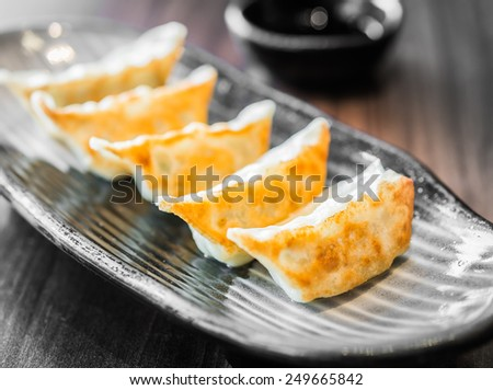 Asian appetizer menu fried pork dumplings - stock photo