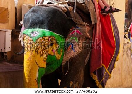 Asian elephant (Elephas maximus), Jaipur, India - stock photo