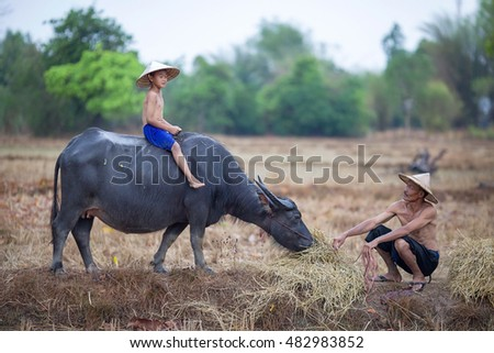 how to ride a buffalo