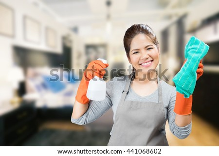 Maid Cleaning Stock Images Royalty Free Images amp Vectors