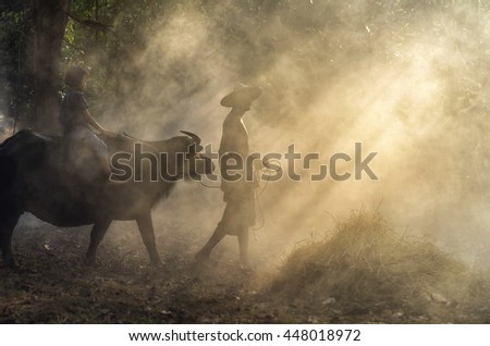 Asian old man walking with girl riding buffalo over the ray of sun background,worm color tone, Countryside Lifestyle concept - stock photo