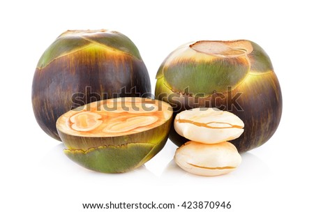 Asian Palmyra palm, Toddy palm, Sugar palm on white background