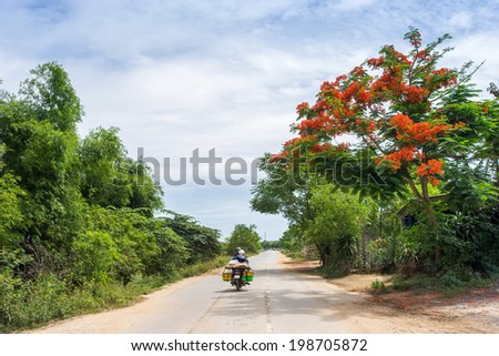 Asian woman riding motorbike on street in Quang Tri province, Vietnam.