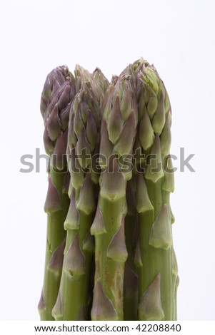 Asparagus Tips close up isolated against white background. - stock photo