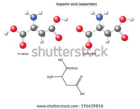 Aspartic acid (Asp) - chemical structural formula and models, amino acid, in vacuo, zwitterion, 2D and 3D illustration, balls and sticks, isolated on white background - stock photo