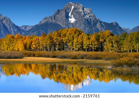Aspen reflections - stock photo