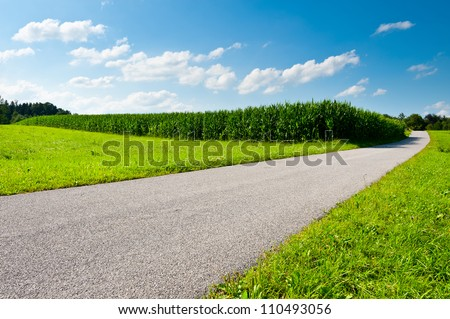 Asphalt Path between Corn  Fields in Bavaria, Germany - stock photo