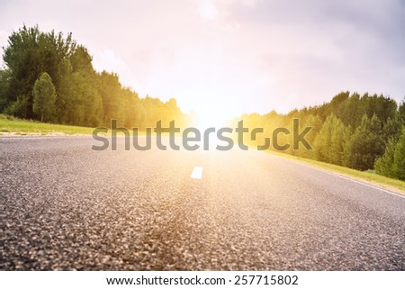 Asphalt road deep in the forest. A sunset. Background in refocuse.
