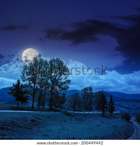 asphalt road going off into the distance and  passes through the green shaded forest to town at night in moon light - stock photo