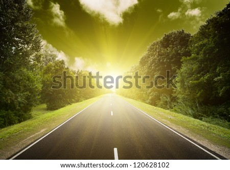 Asphalt road in green forest. Belarus. Sunset. - stock photo