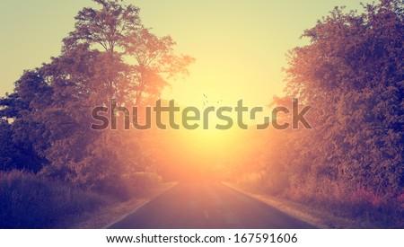 Asphalt road in sunset - stock photo
