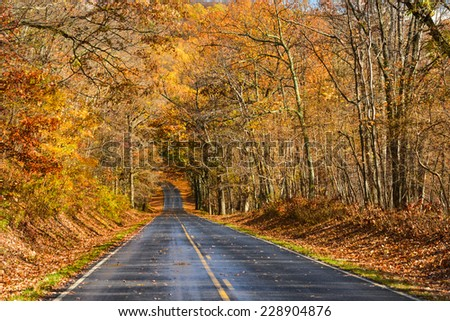 Asphalt road into the autumn forest - Shenandoah National Park, Virginia - USA - stock photo