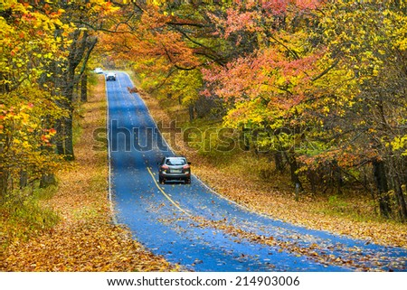 Asphalt road with autumn foliage - Shenandoah National Park, Virginia United States  - stock photo