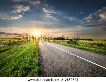 Asphalted highway in the field and sunlight