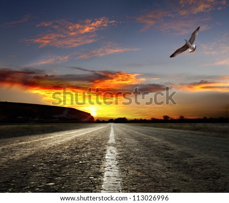 asphalted road at sunset - stock photo