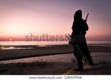 assassin at the sea