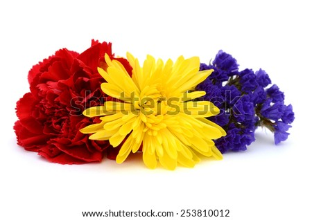 Assorted fall flowers on white - stock photo
