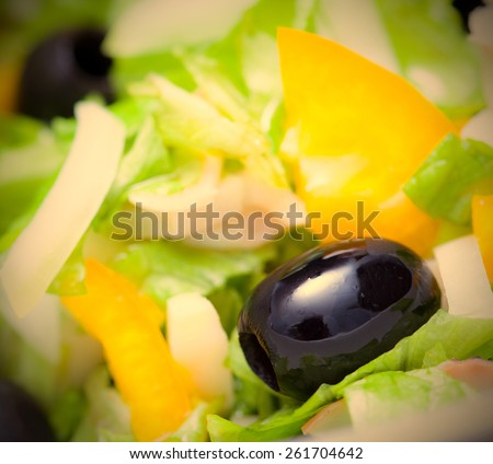 Assorted green leaf lettuce with squid and black olives, close up. instagram image retro style - stock photo