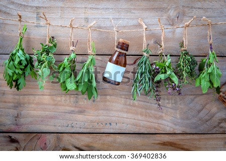 Assorted hanging herbs ,parsley ,oregano,mint,sage,rosemary,sweet basil,holy basil,  and thyme for seasoning concept on rustic old wooden background. - stock photo