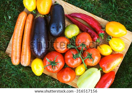 Assorted organic harvested on a farm vegetables. Ripe eggplant, peppers, carrots and tomatoes on wooden board - stock photo