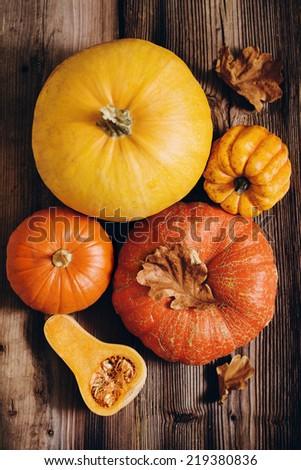 Assorted pumpkins - stock photo