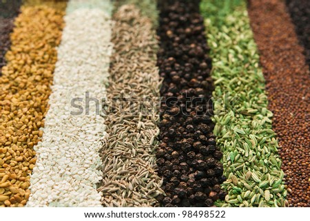 Assorted spices (shallow DOF) - stock photo