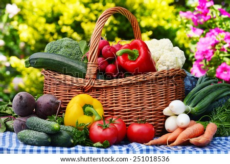 Assorted vegetables in wicker basket in the garden - stock photo